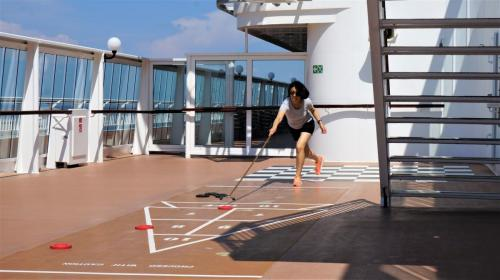 Outdoor Shuffleboard Game